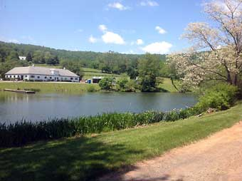 Hunt Country Stable Tour - Trappe Hill Farm