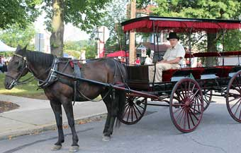 New Berlin Antiques, Arts and Crafts Show - Karl Purnell with his horse Mercedez providing Horse and Carriage Tours.