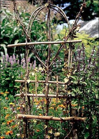 Mini-Projects - Another bentwood garden trellis